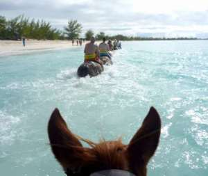 horse ride at Half Moon Cay