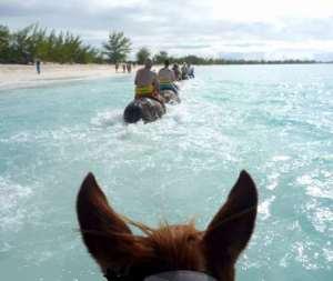 horse ride at Half Moon Cay
