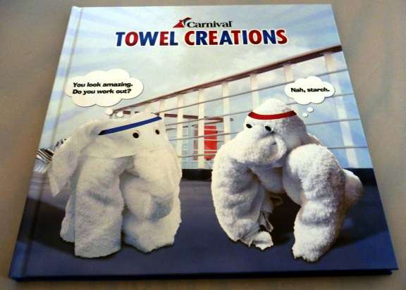 towel folding book