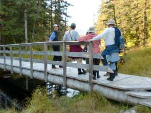 Ideal Cove Trail, Alaska - Boardwalk Forest Service trail