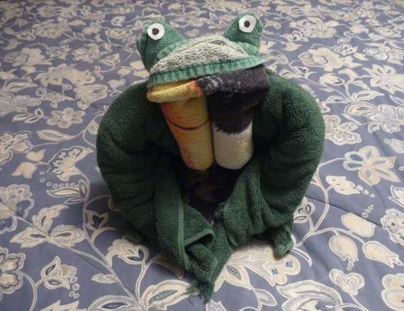 how to fold a cruise ship towel frog / towel art