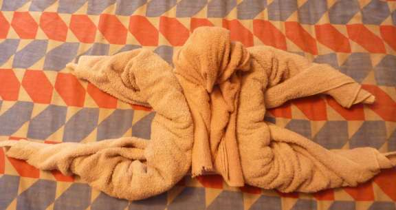 towel animal folding