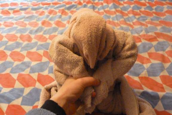 how to fold towel animals