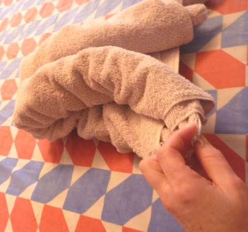 folding cruise ship towel animals