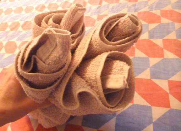 how to make cruise ship towel animals