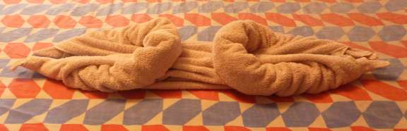 the art of towel animal folding