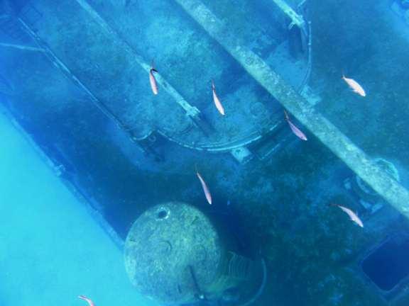 USS Kittiwake, wrecks to reefs Grand Cayman