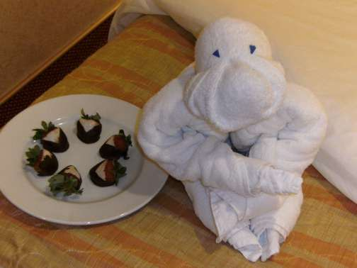 towel gorilla with chocolate covered strawberries
