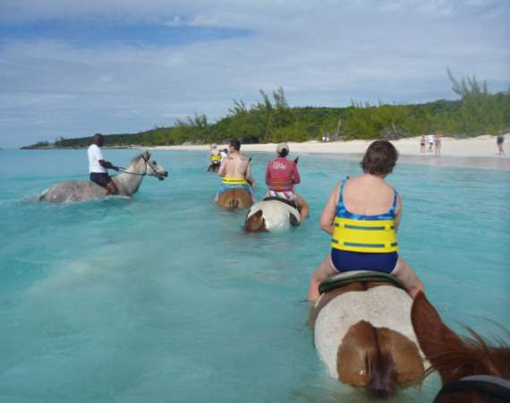 Half Moon Cay Horse Ride