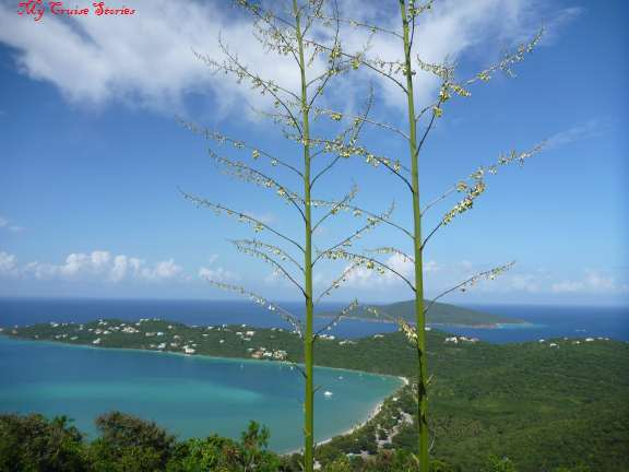 Magens Bay, St Thomas