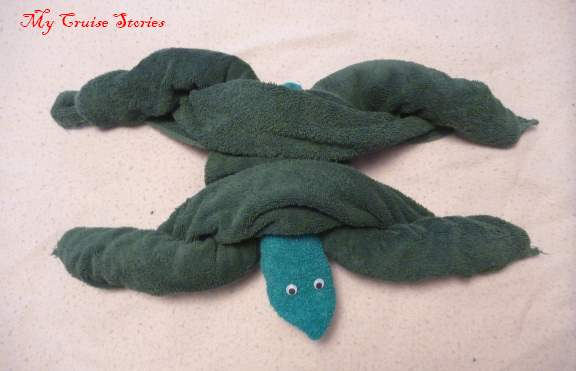 towel turtle #2