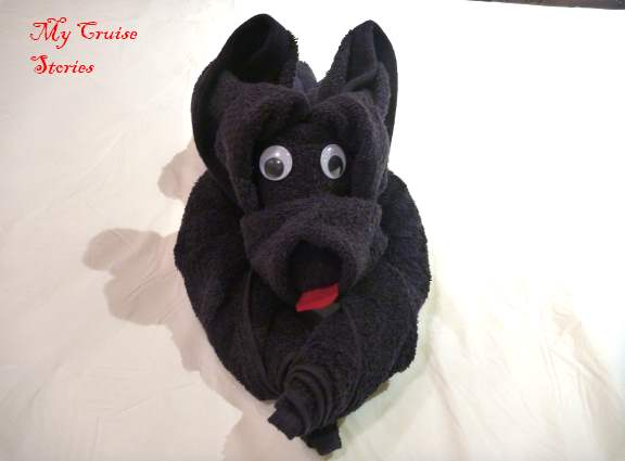 How to make a towel dog