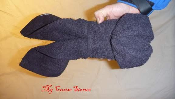 towel dog head
