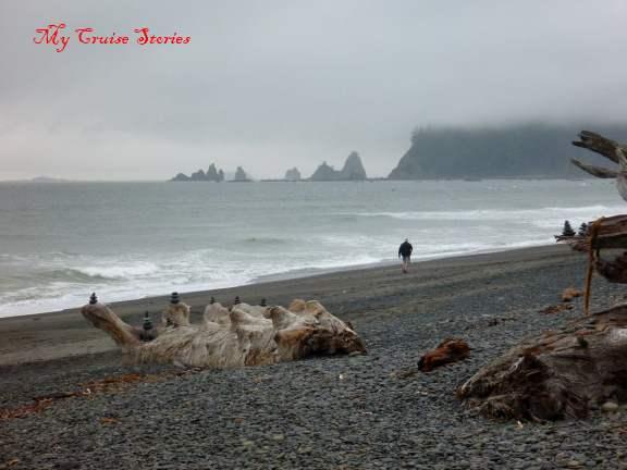 Rialto beach on Twilight Tour
