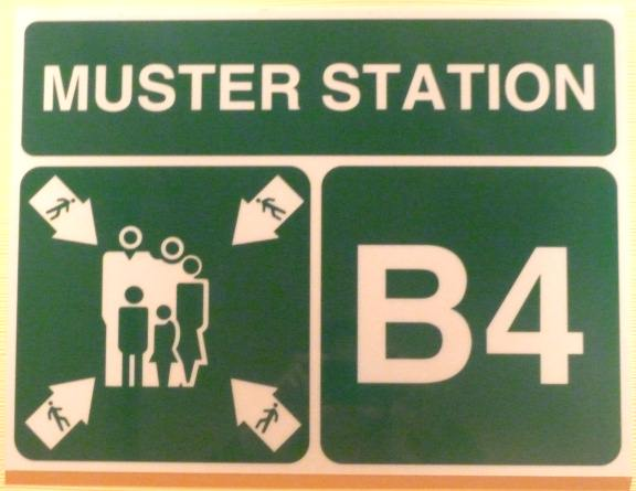 Cruise Ship Safety Cruise Ship Muster Station