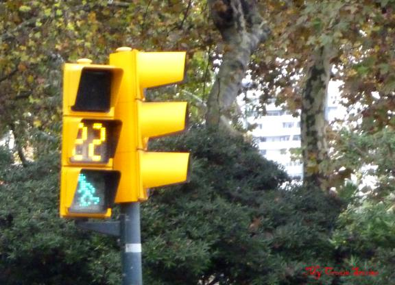 amusing traffic light