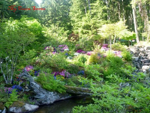 shore excursion to Glacier Gardens