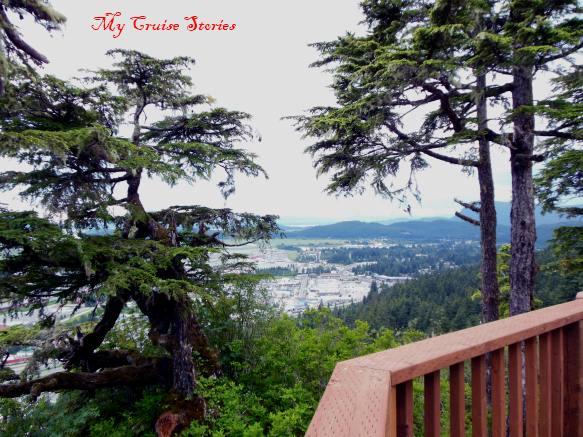 Glacier Gardens shore excursion includes tram ride up a mountain