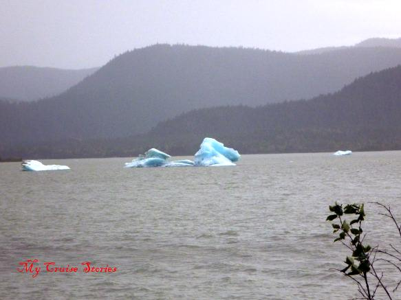 little ice bergs near Mendenhall Glacier