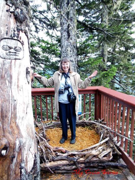 model eagle nest