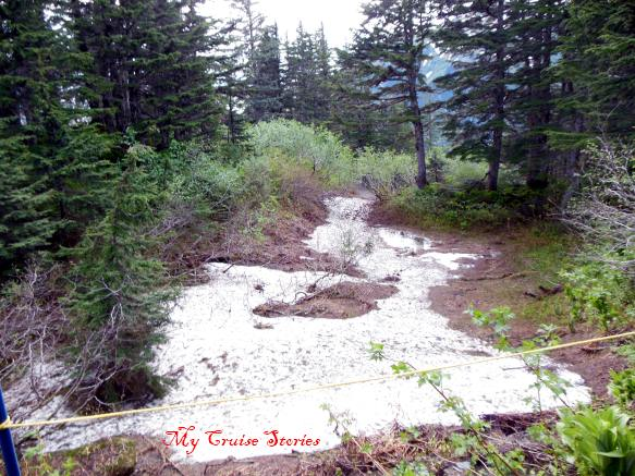 snow on the trail at Mt Roberts