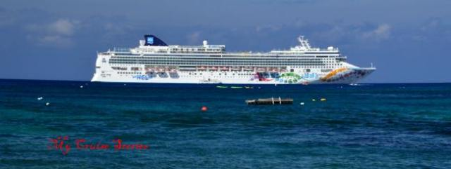online websites offer bargain cruises