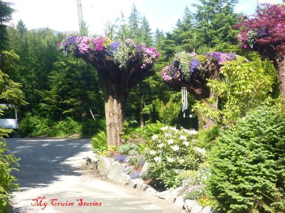 Glacier Gardens, Juneau Alaska