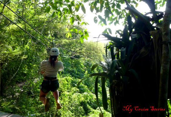zipline Jamaica