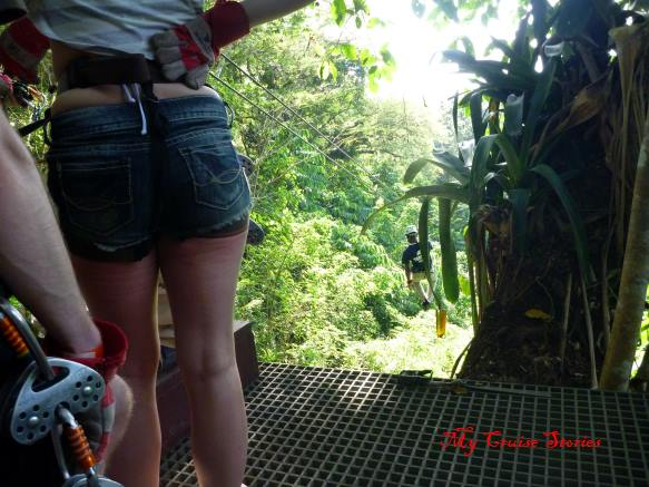 zipline in Jamaica