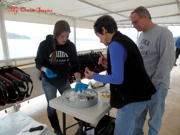 oyster shucking demonstration