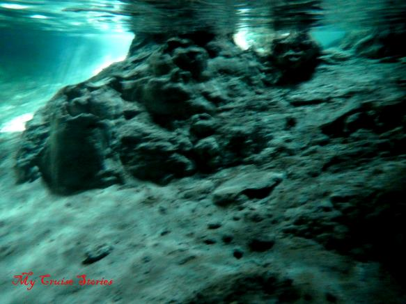 in the water in a cenote