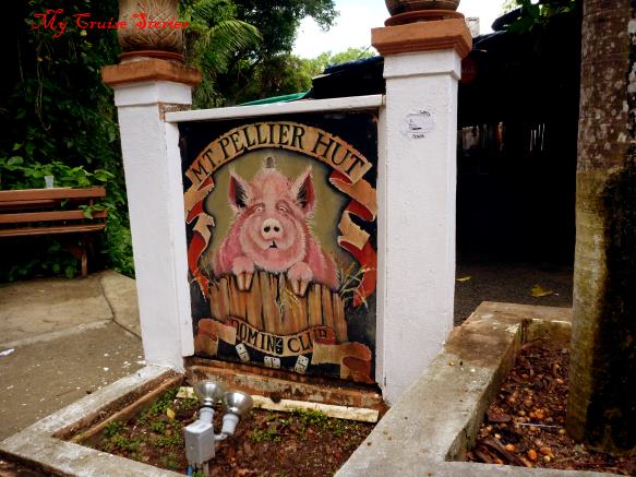 home of the beer guzzling pigs