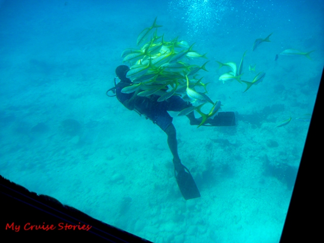 diver from the semi-sub