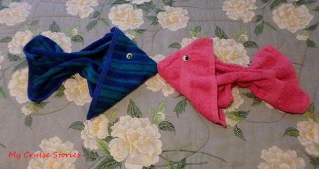 towel fish