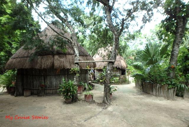 Mayan huts
