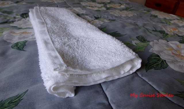 making a towel dog head
