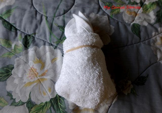 towel pets