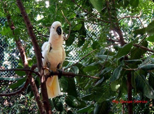 zoo at Cartagena cruise port