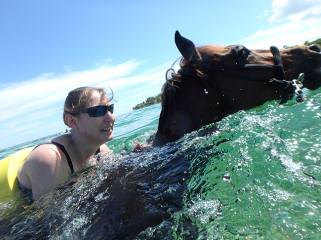horse swim at private stable