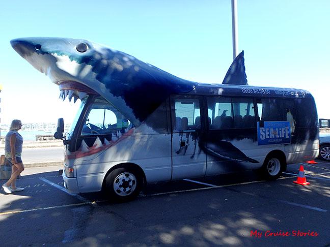 free shuttle to Auckland Aquarium