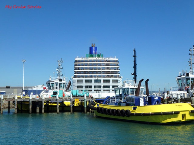 Tauranga cruise port