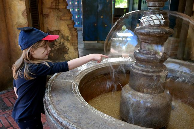 fountain at Animal Kingdom
