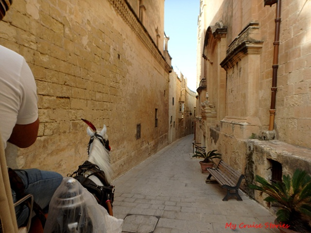 horse carriage through Mdina
