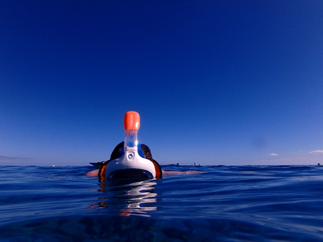 snorkling with Tribord full-face mask