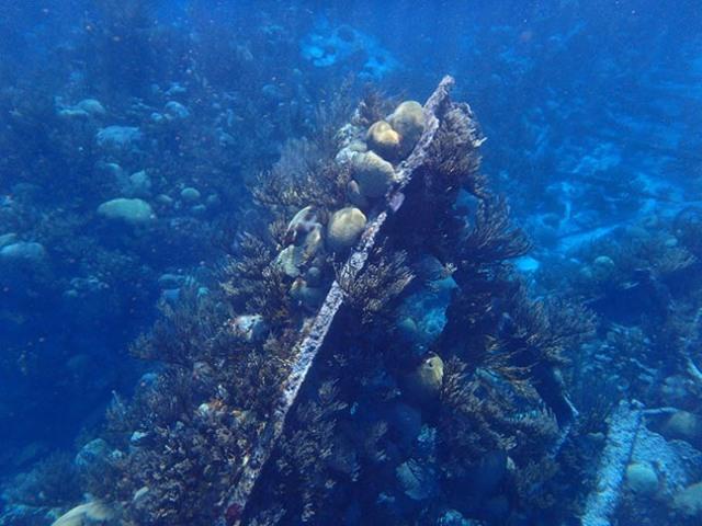 old shipwreck near Bermuda