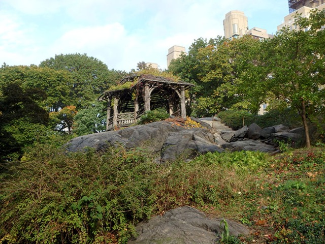 in New York's Central Park