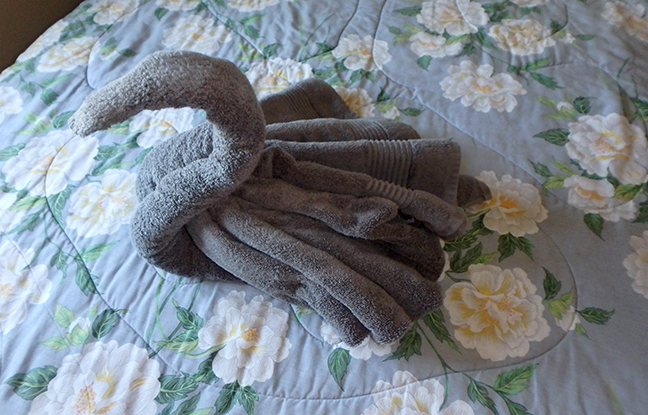 winged towel swan