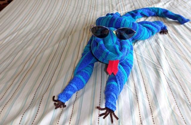 towel iguana