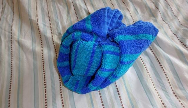 making a towel iguana head