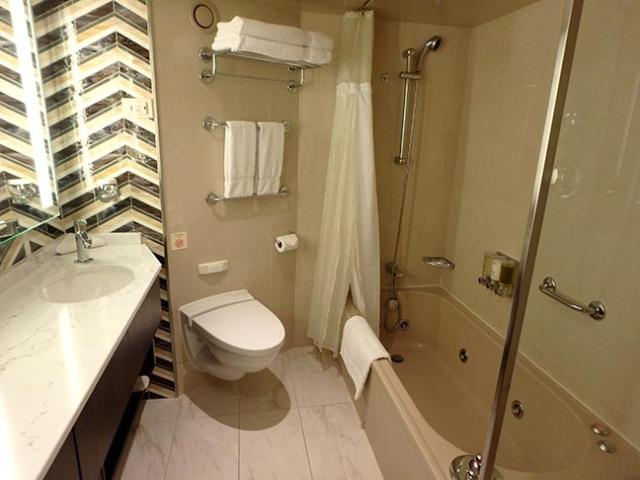 Oosterdam neptune suite bathroom